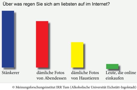 UmfrageInternet2