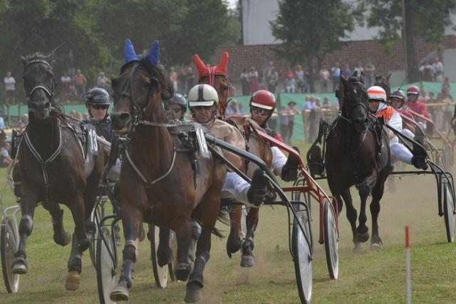 PferderennenBarthelmarkt