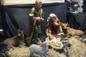 Skandalös! Noch immer müssen Tiere für religiöse Bräuche herhalten.